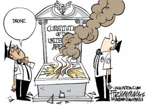 constitution drone