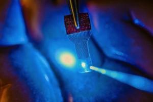 graphene brain sensor
